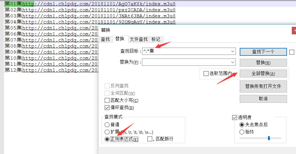 notepad++ 删除指定字符之后  或者 之前的字符